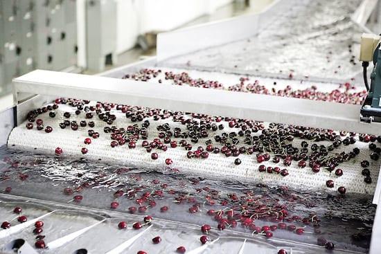Cherries11