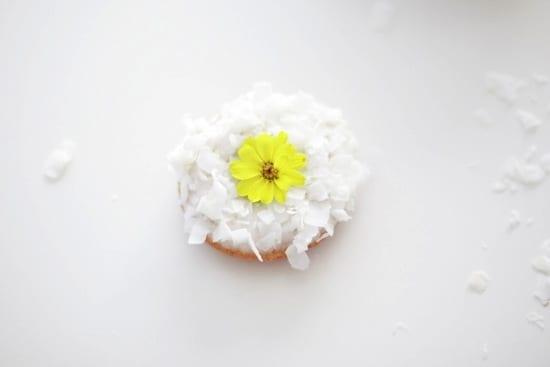 DonutPhoto2