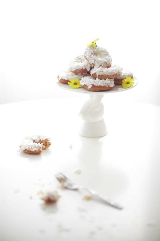 DonutPhoto5