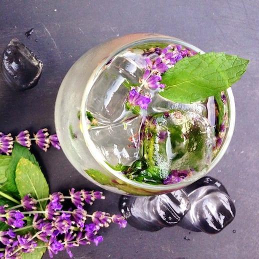 lavendarvodkamojito