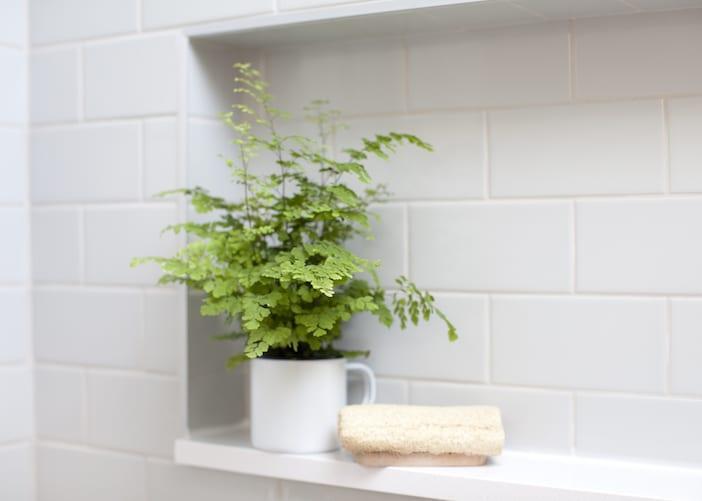LOLV EP3060 - Detail - Upstairs Bathroom 2