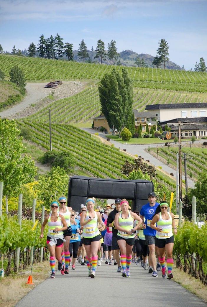 OOWA Half Corked Marathon start. Credit Darren Robinson. jpg