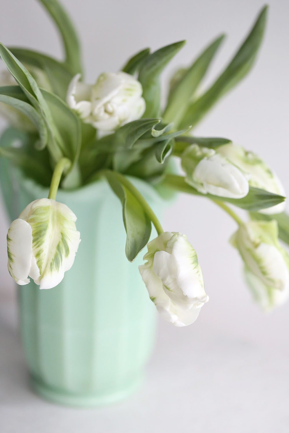 Jillian Harris - Ways to get your home ready for spring - Erin Sousa-6