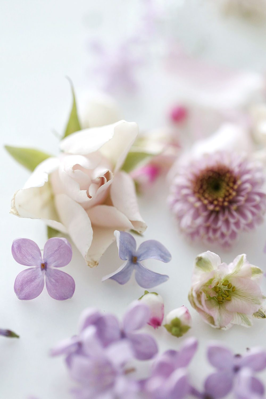 Jillian Harris DIY Floral Ice Cube
