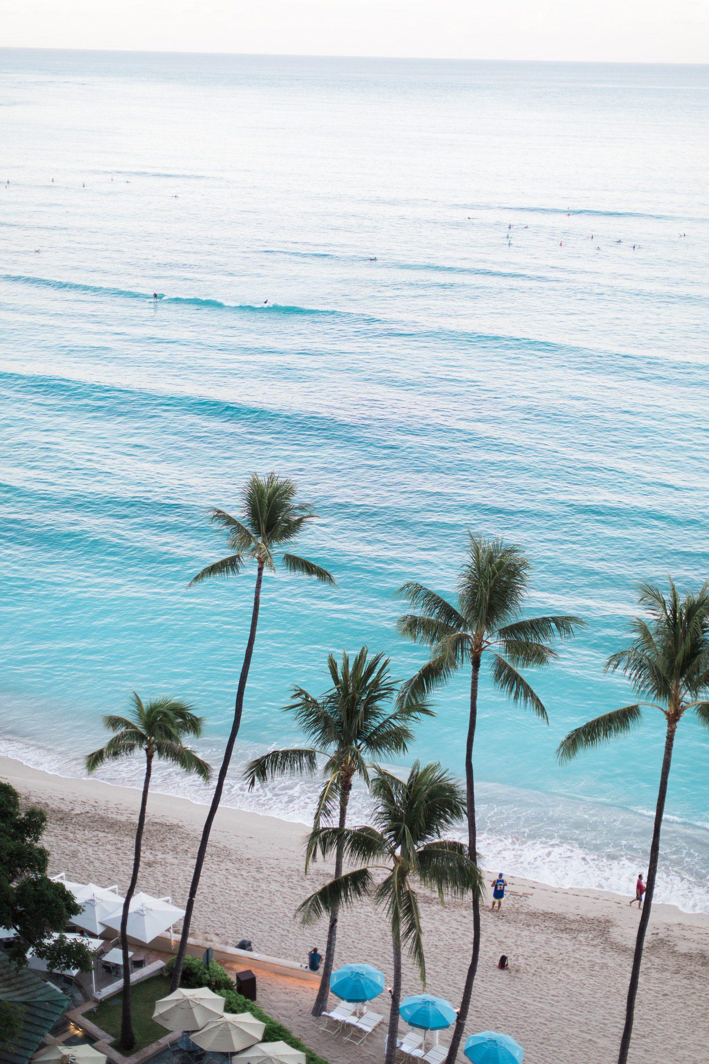 Jillian Harris Honolulu Hawaii Recap