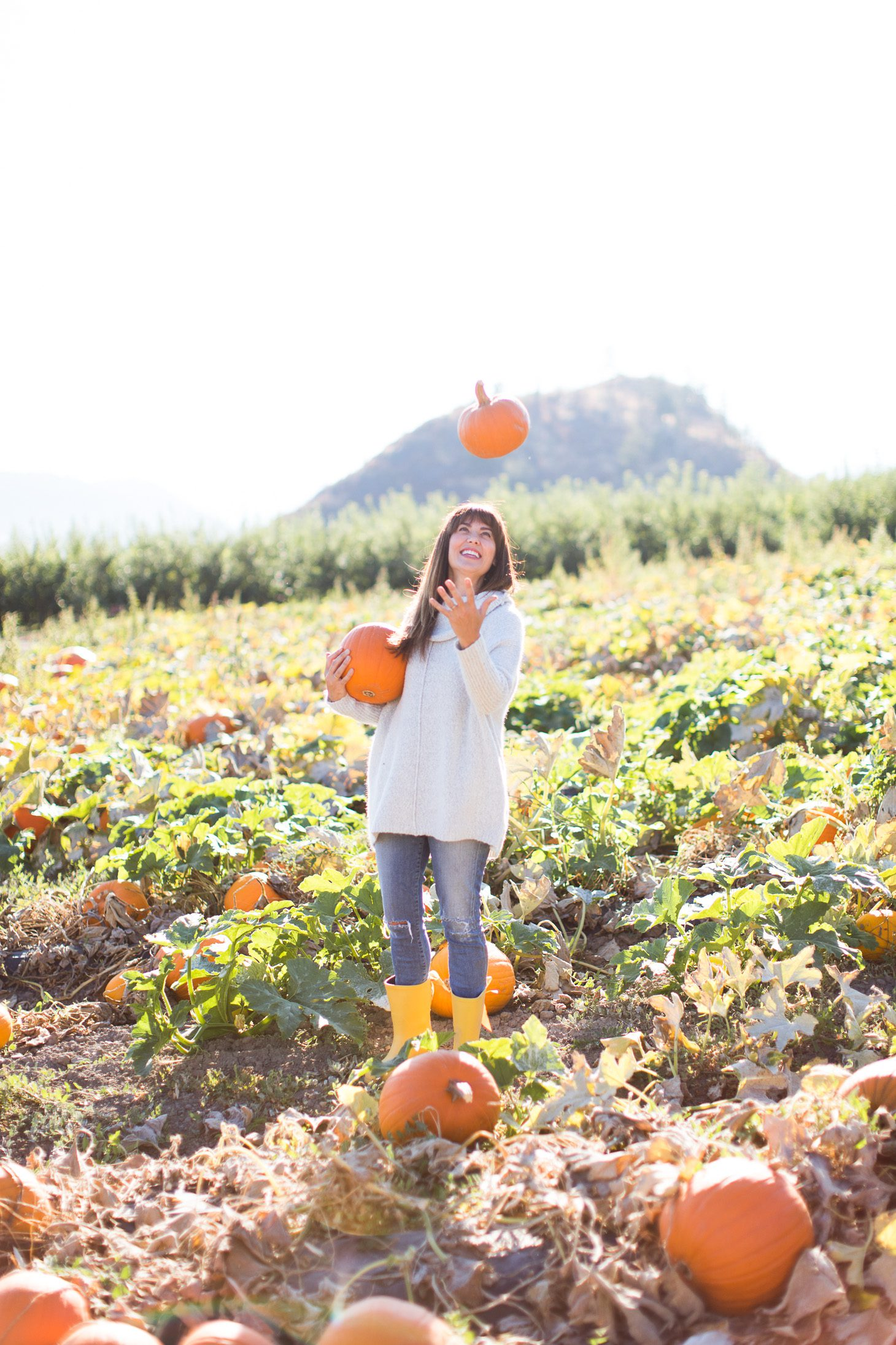 Jillian Harris ModCloth Sweater Pumpkin Patch