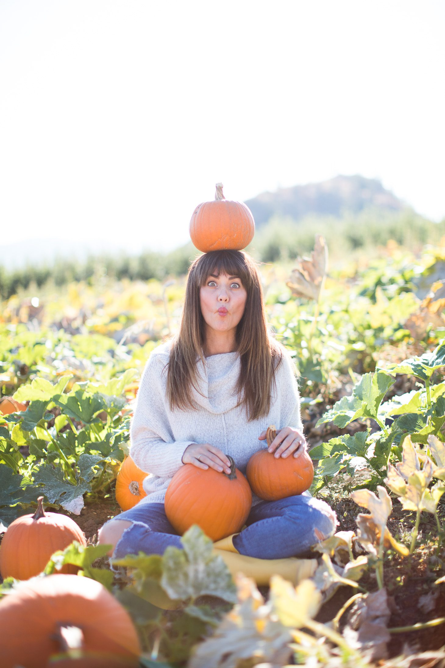 Jillian Harris ModCloth Sweater Pumpkin Patch