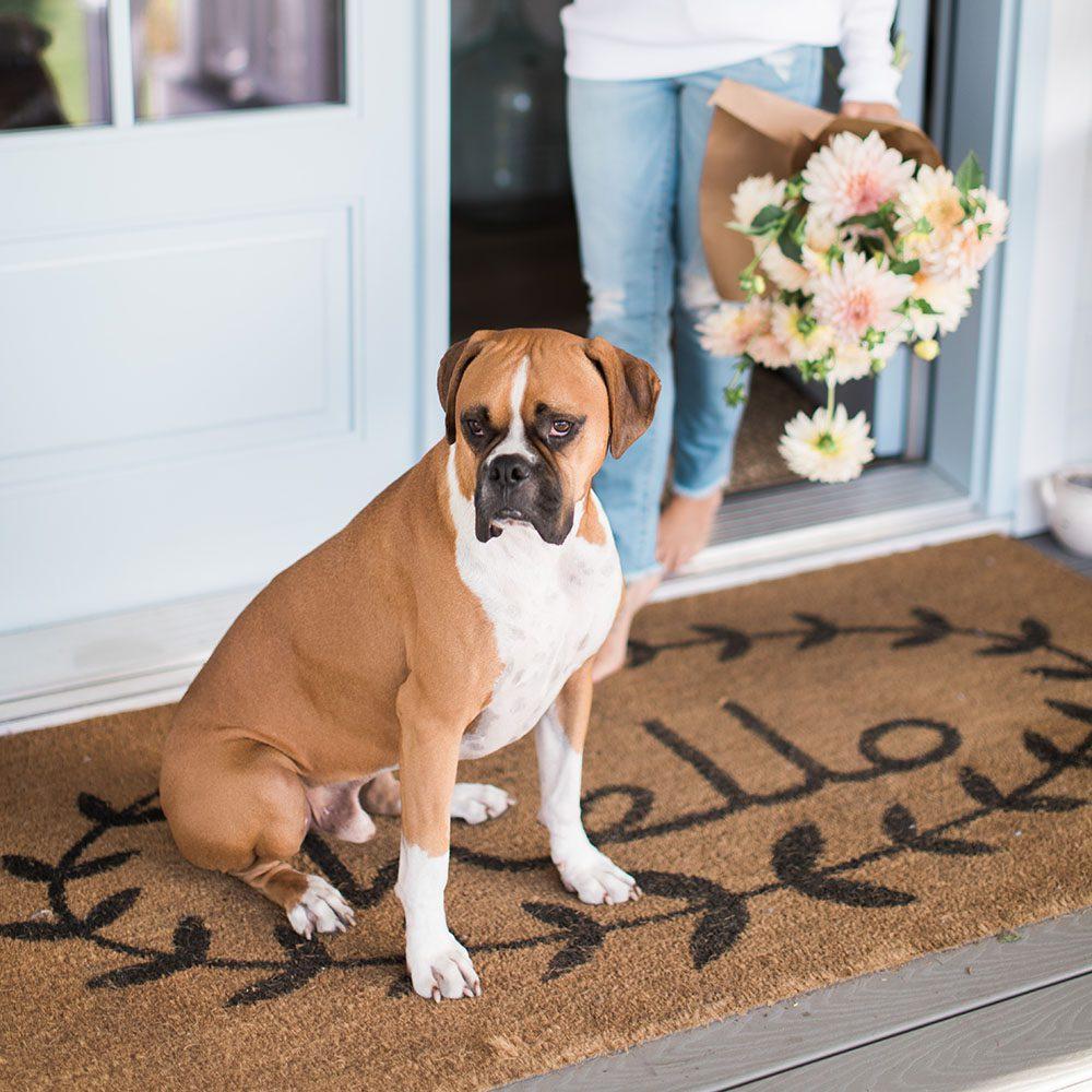 Jillian Harris Doormat Favourites