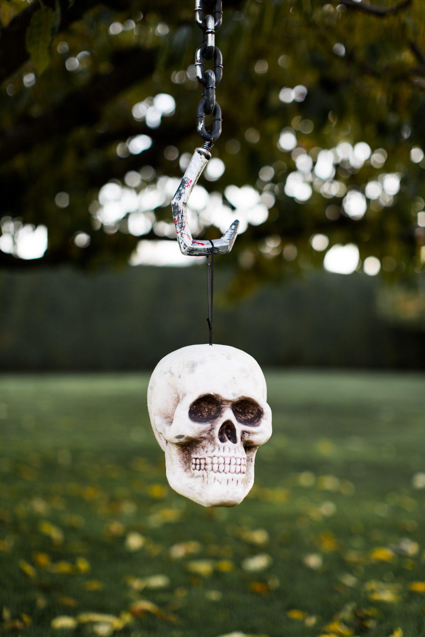 Jillian Harris Halloween Decorations