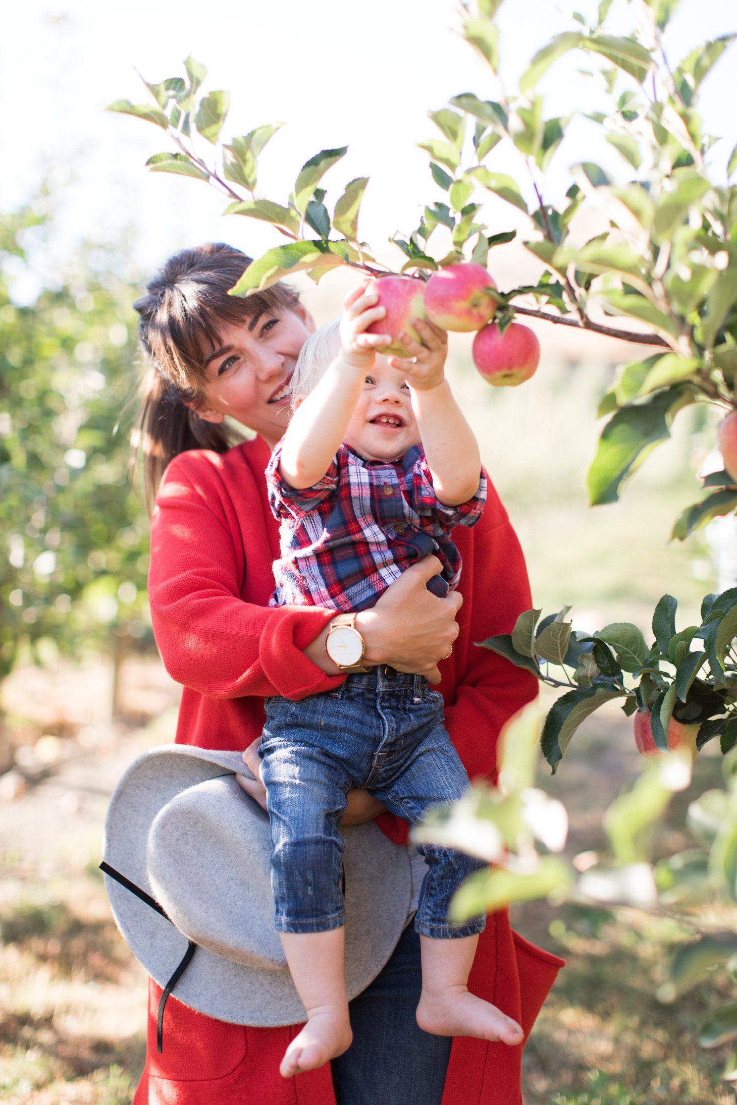 Jillian Harris and Leo Apple Picking