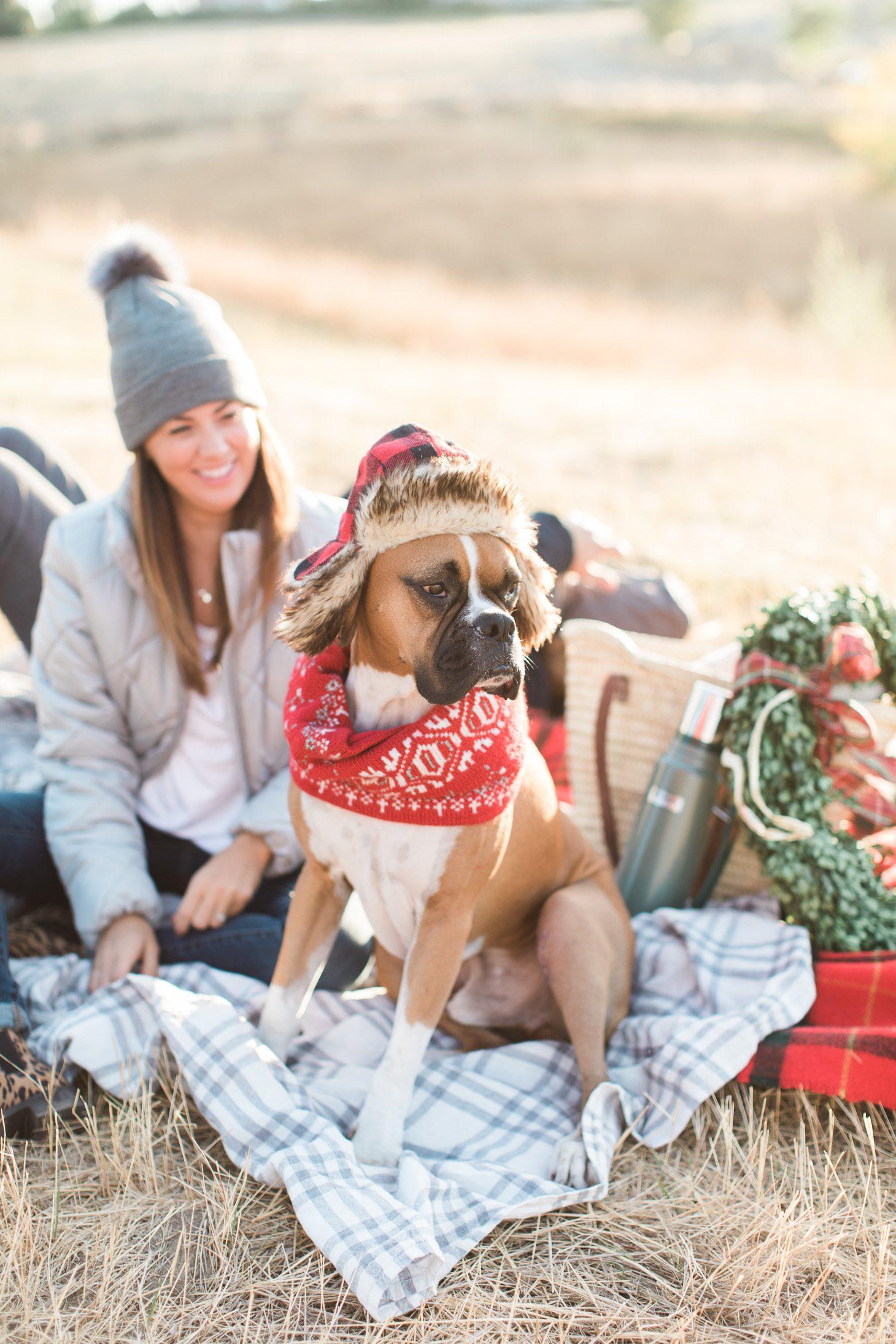 Jillian Harris Joe Fresh Christmas