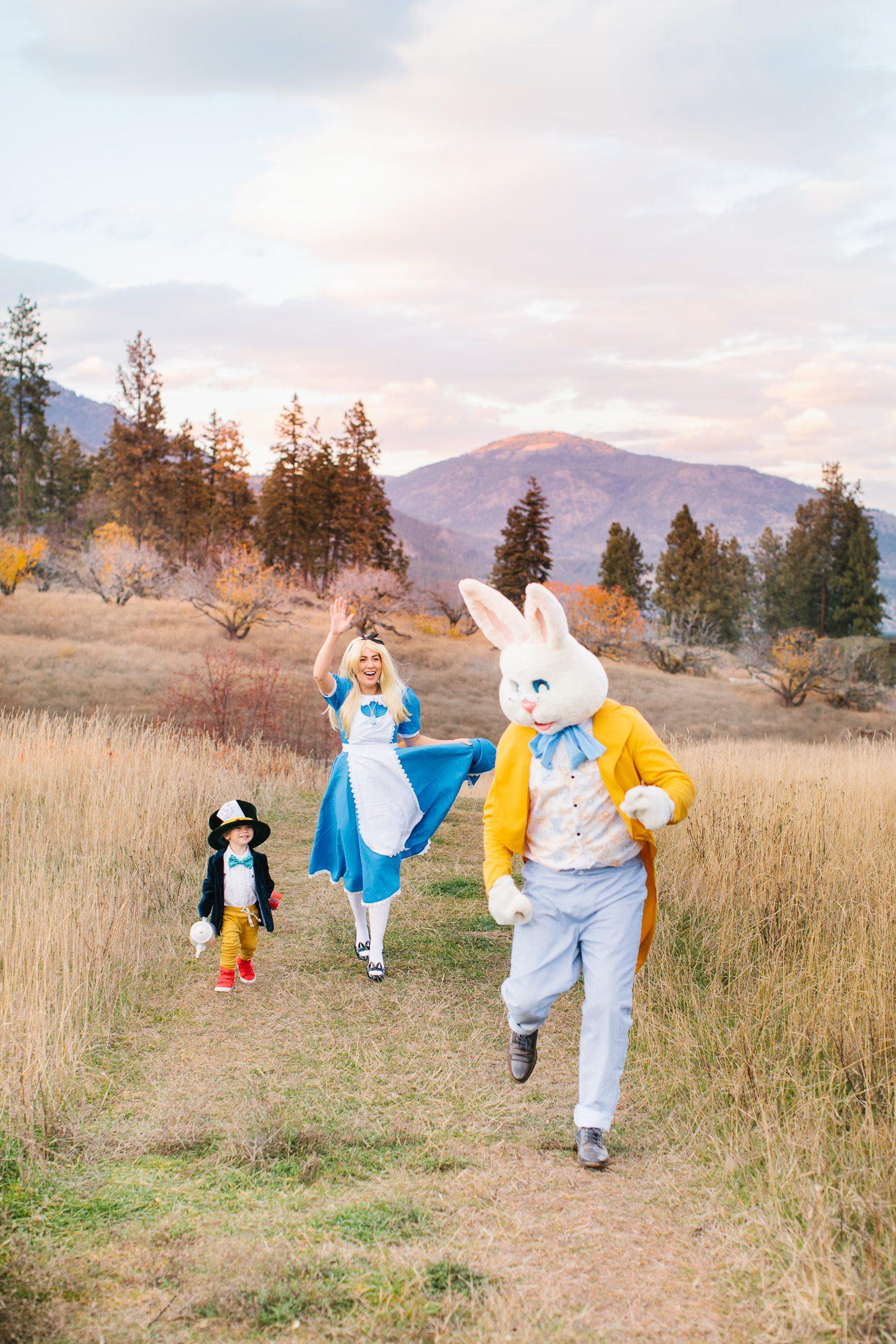 Jillian Harris Alice in Wonderland Halloween Costume