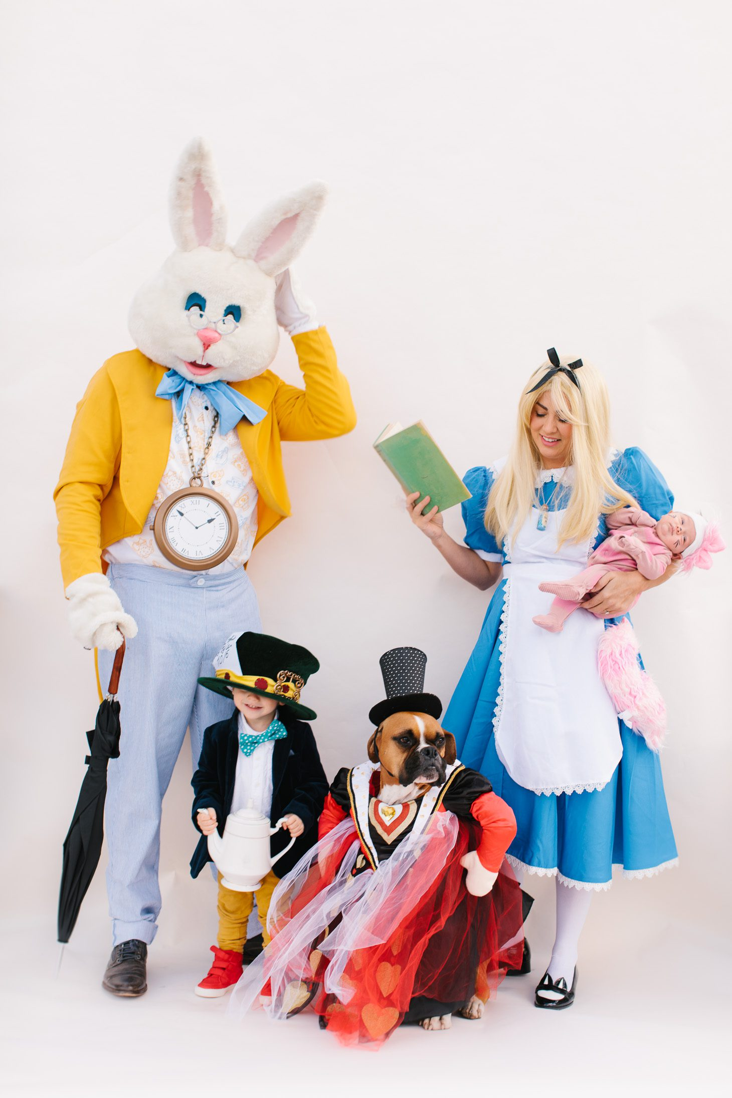 Jillian Harris Alice in Wonderland Halloween Costume