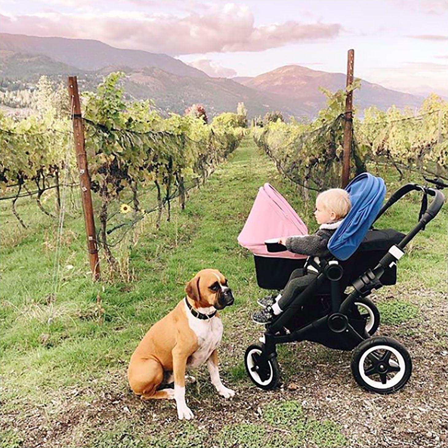 Jillian Harris Favourite Baby Items