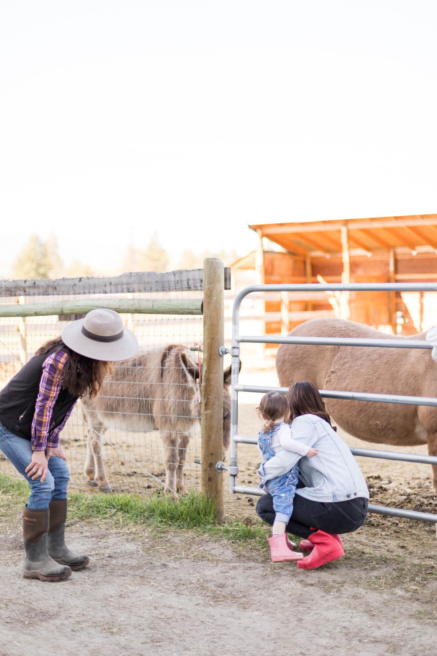 Jillian Harris 3 Things to add to your Okanagan Bucket List