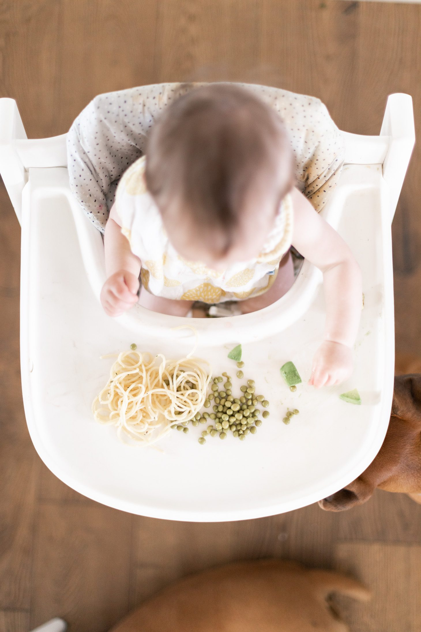 Jillian Harris Baby LED Weaning