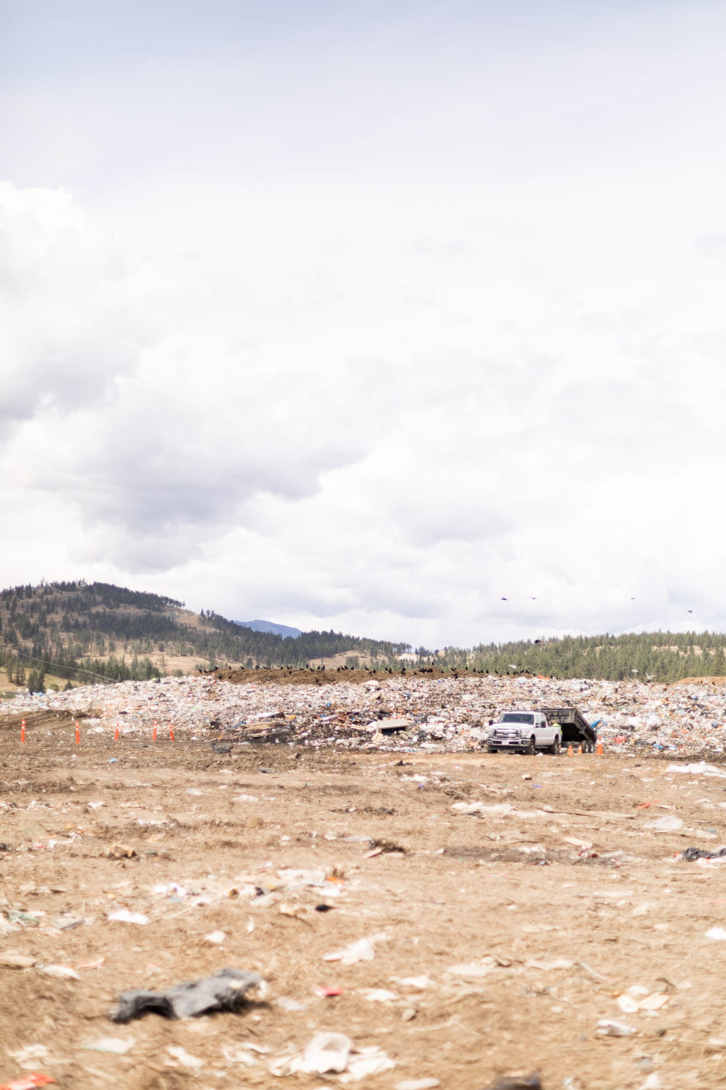 Jillian Harris Landfill