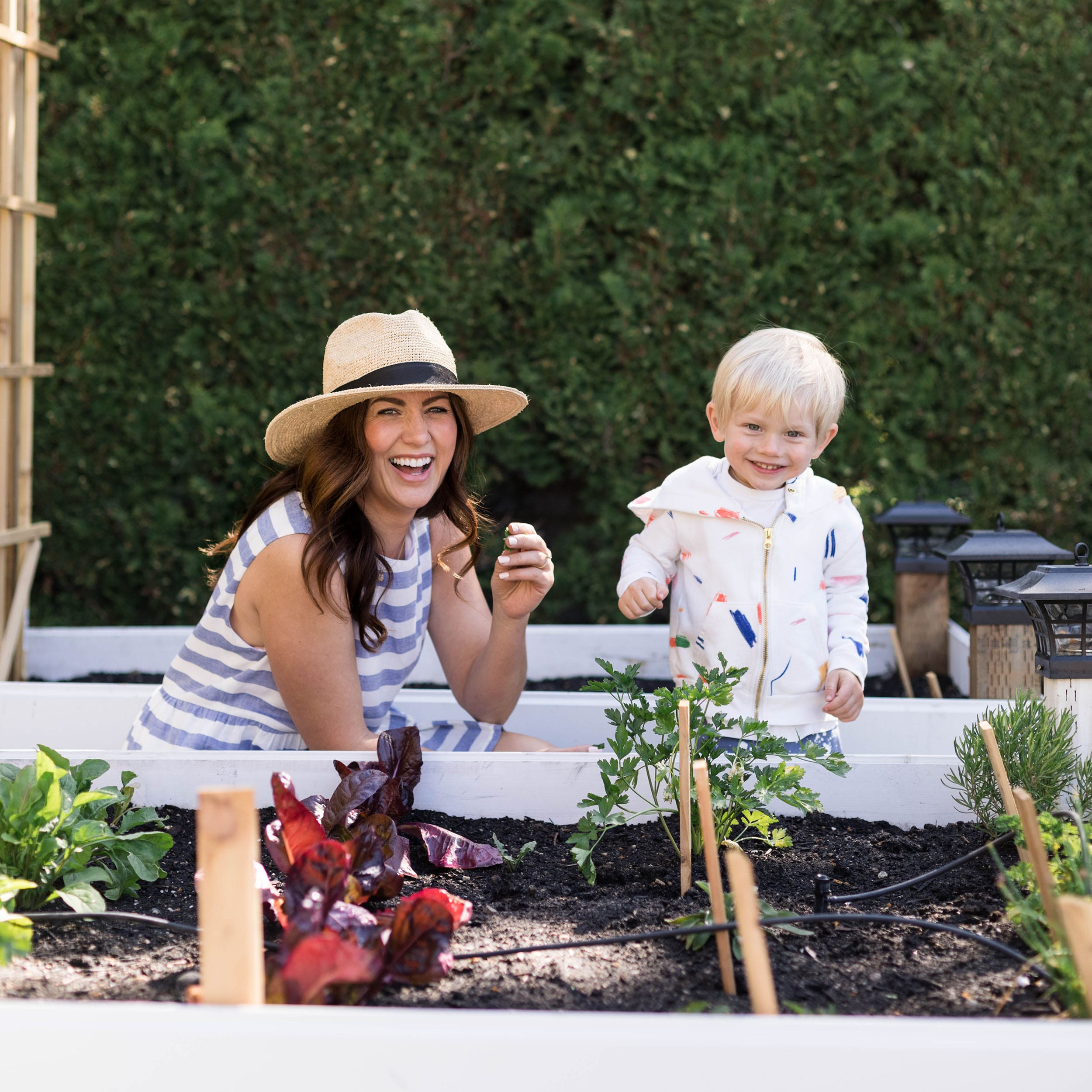 Jillian Harris Climate Change
