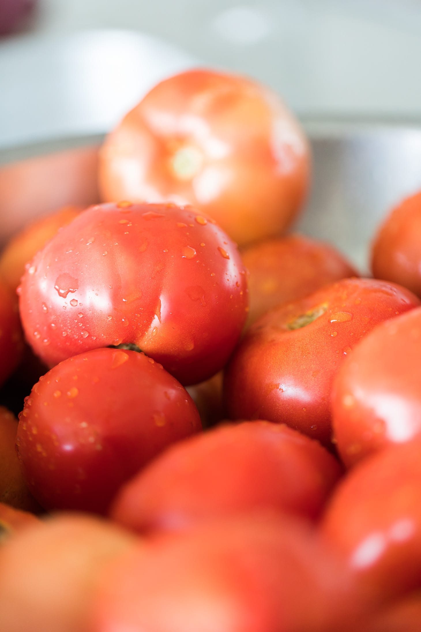 Jillian Harris Tomato Recipes