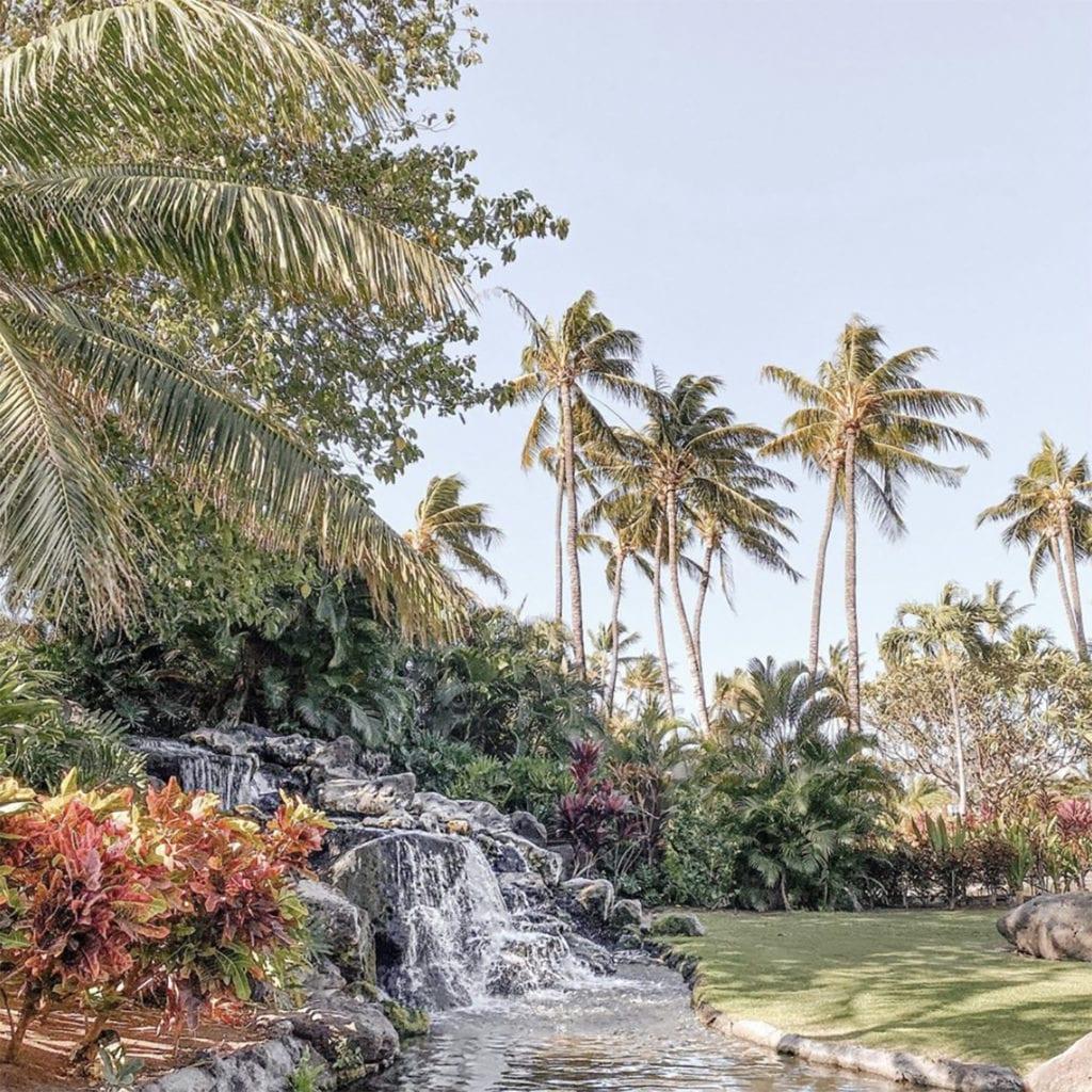 The Fairmont Orchid View