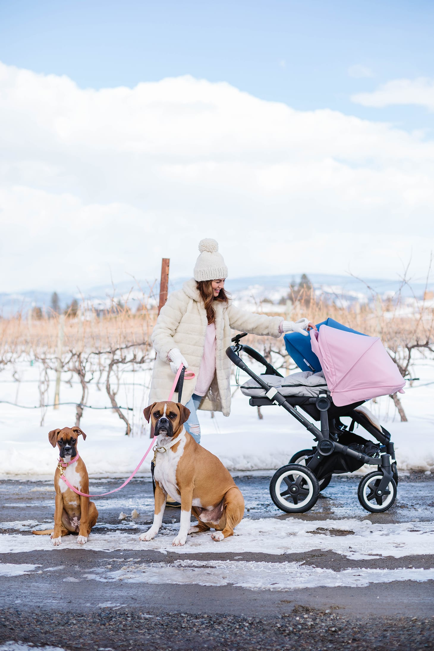 Walking with Kids and Dogs