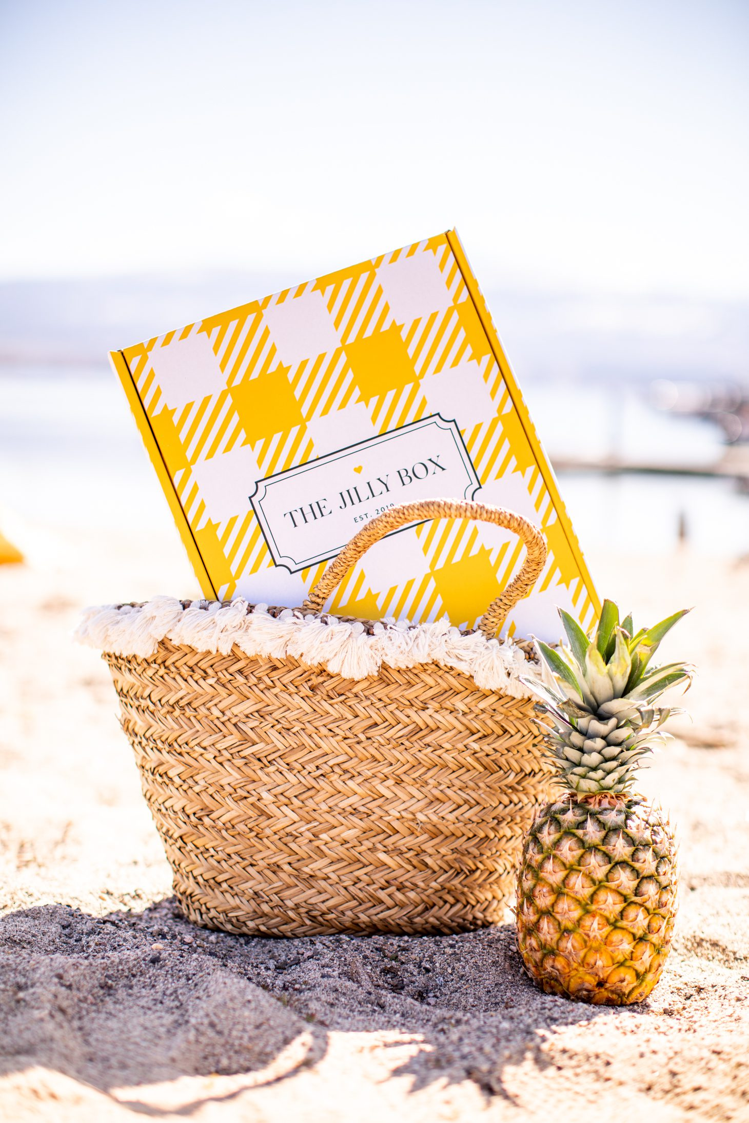 The Summer 2020 Jilly Box on the beach in a bag beside pineapple