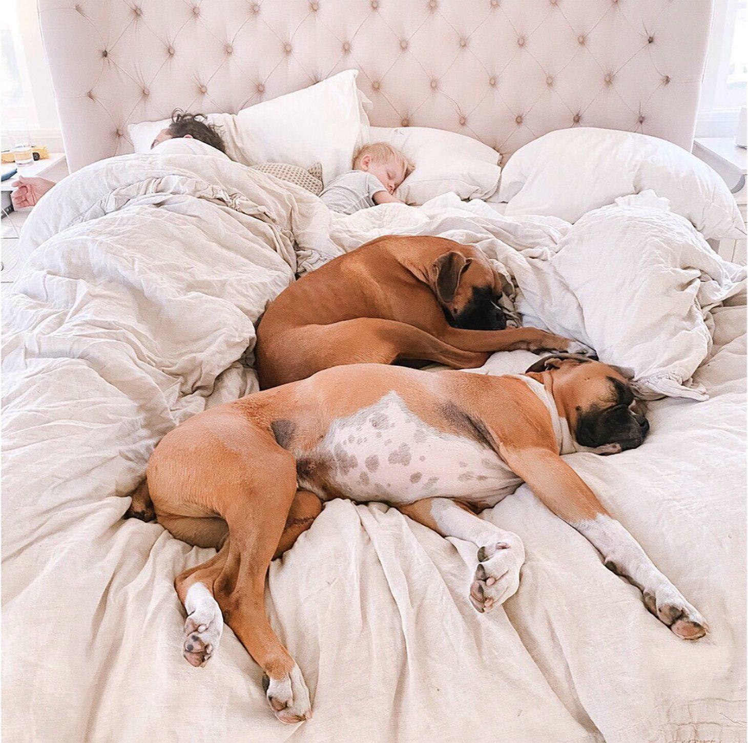 Family Nap Time