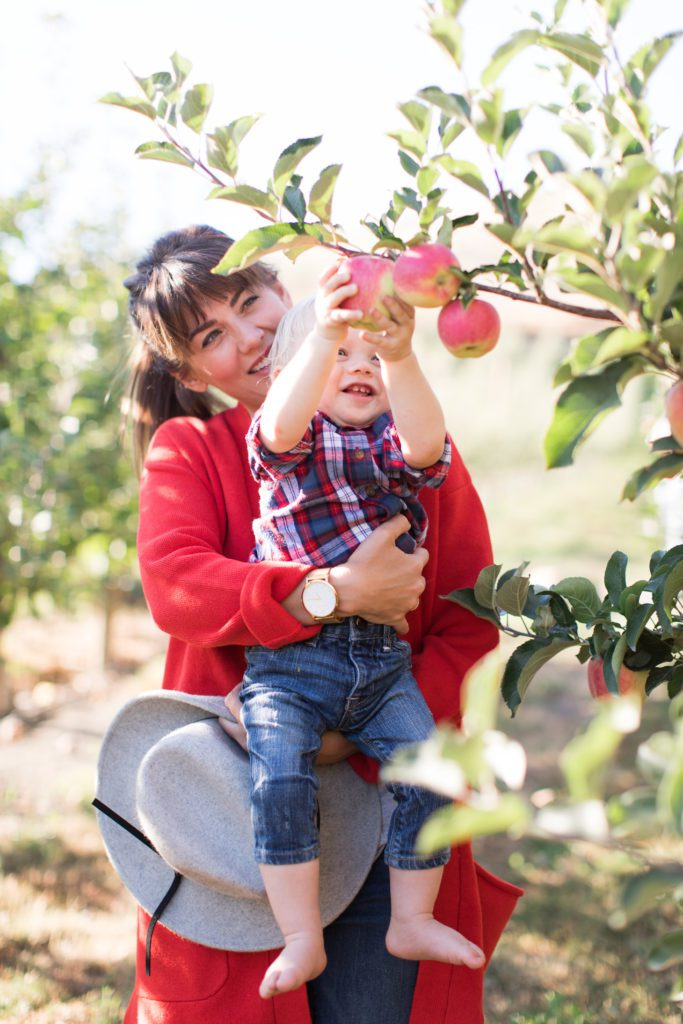 Apple Picking with Leo