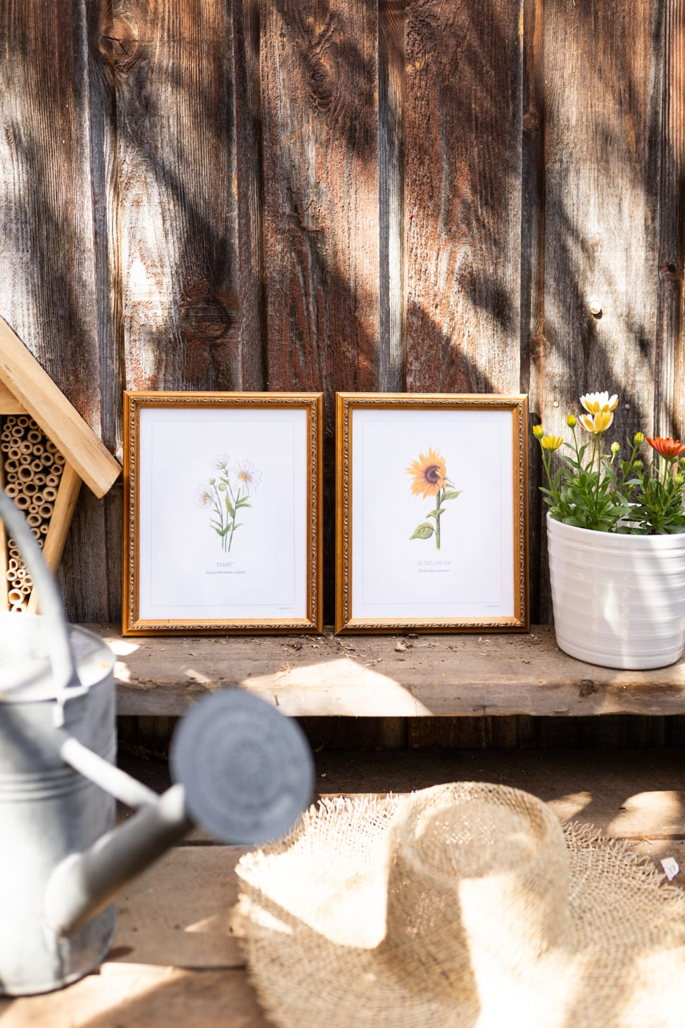 Prints Series by Kaitlin Hargreaves