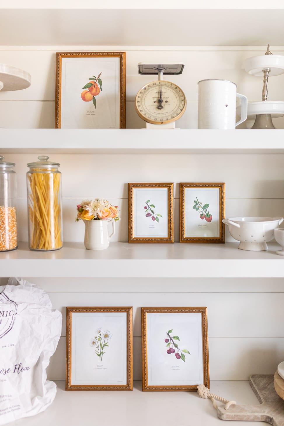 Jillian Harris x Kaitlin Hargreaves Botanical Print Collection