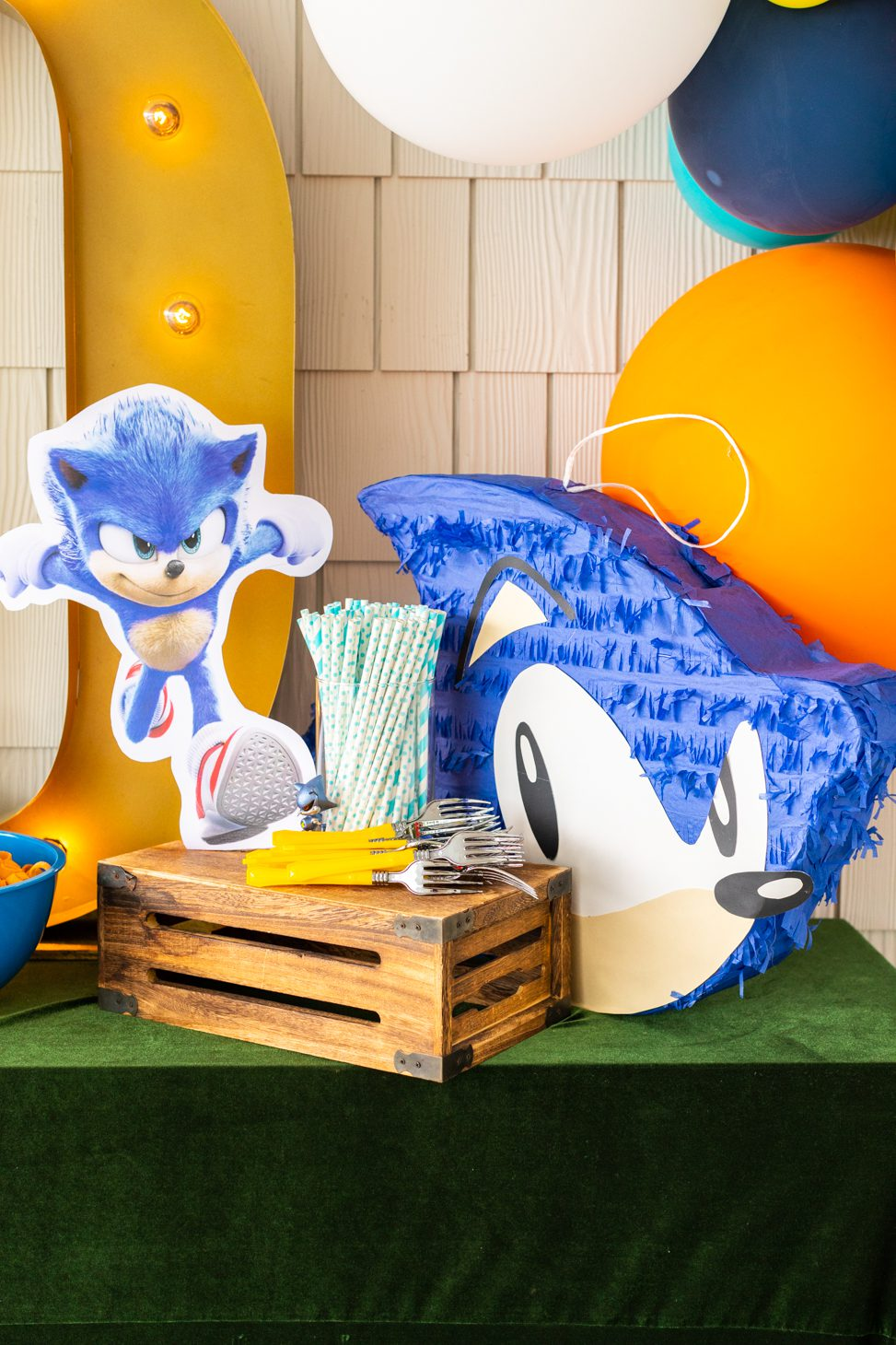 Sonic the Hedgehog themed party decor