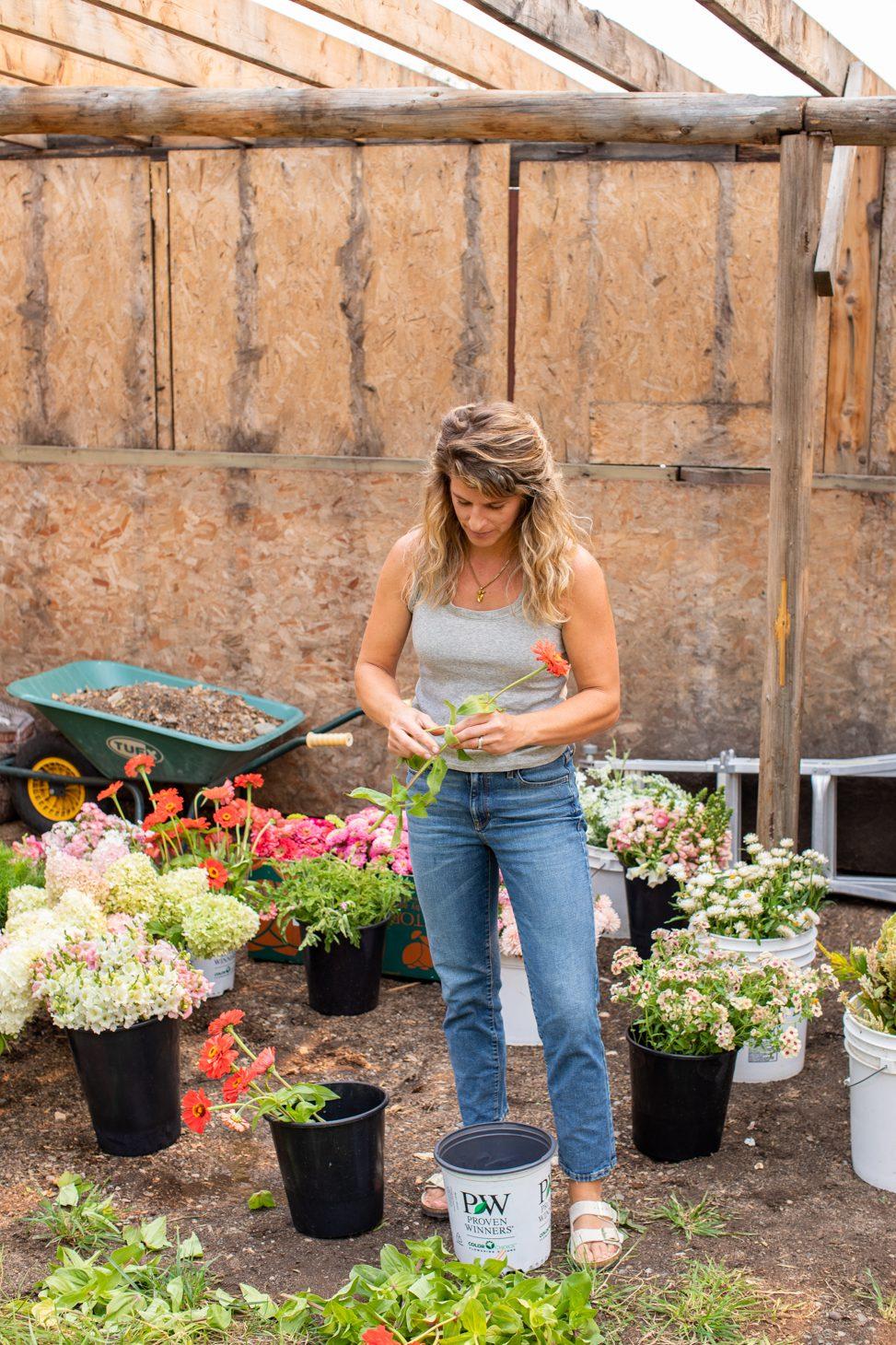 Yolanda From Farm and Flower Co